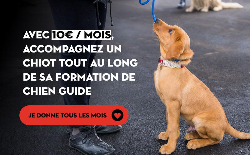 Avec dix euros par mois, accompagnez un chiot tout au long de sa formation de chien guide. Je donne tous les mois.
