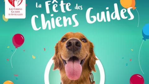 Visuel de la fête des chiens guides